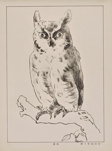 鳥を描いた図その2
